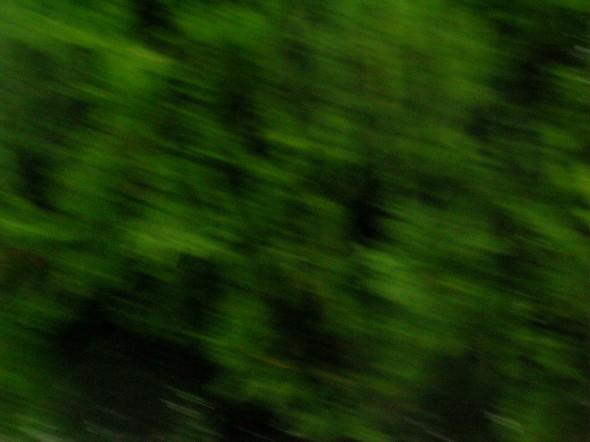 TANK mbrc04-355_green
